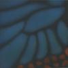 Butterfly Pattern 1