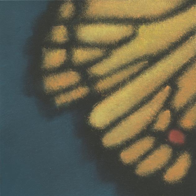 Butterfly Pattern 6